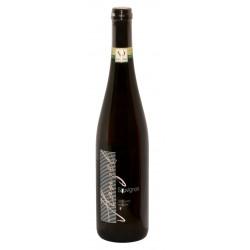 Vinařství Hanzel, Sauvignon 2017, 0,75L